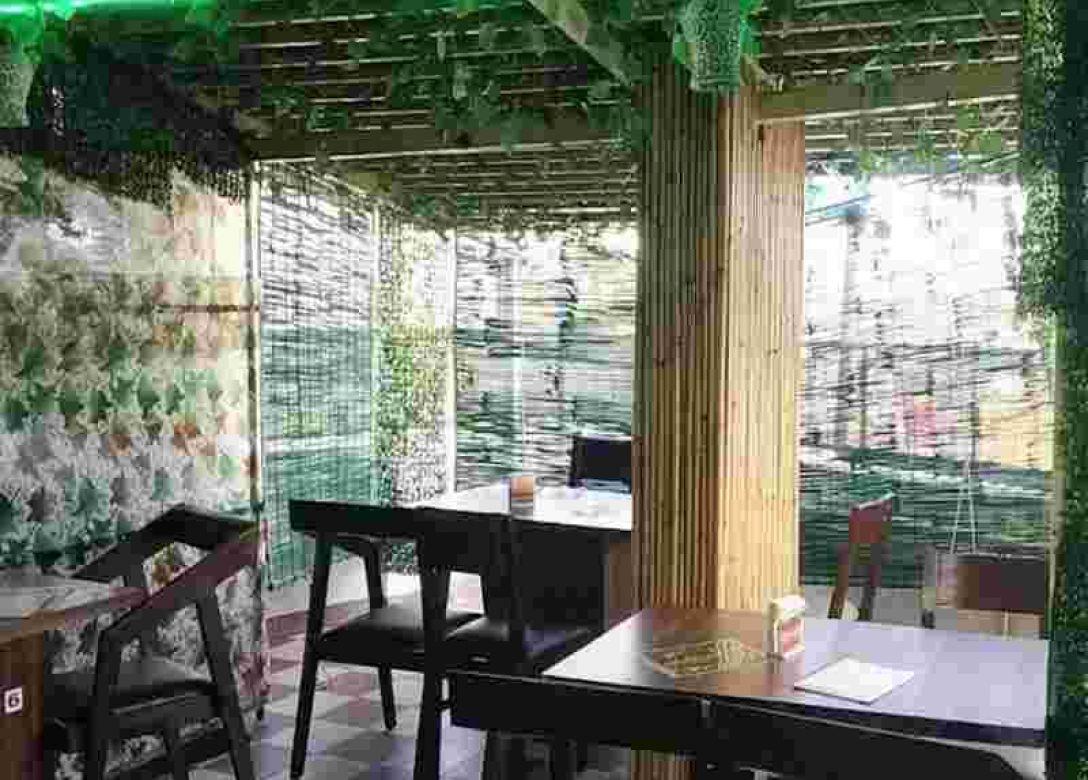 The Jungle Terrace