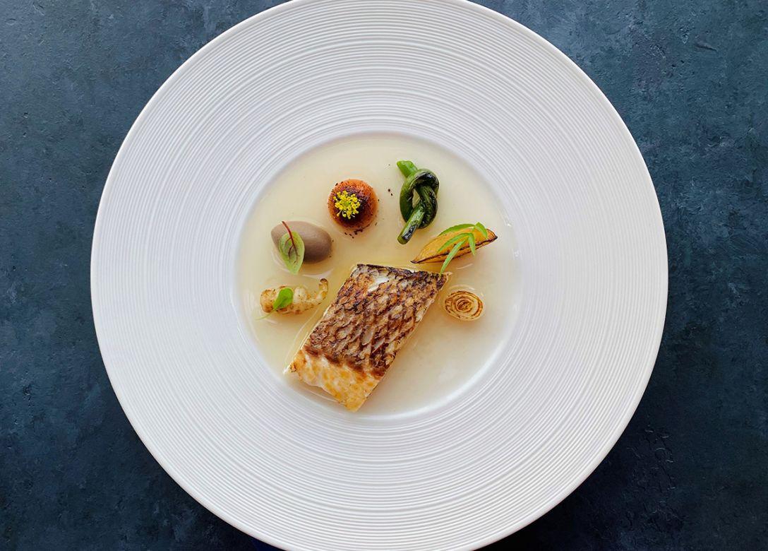Zafferano Italian Restaurant & Lounge - Credit Card Restaurant Offers